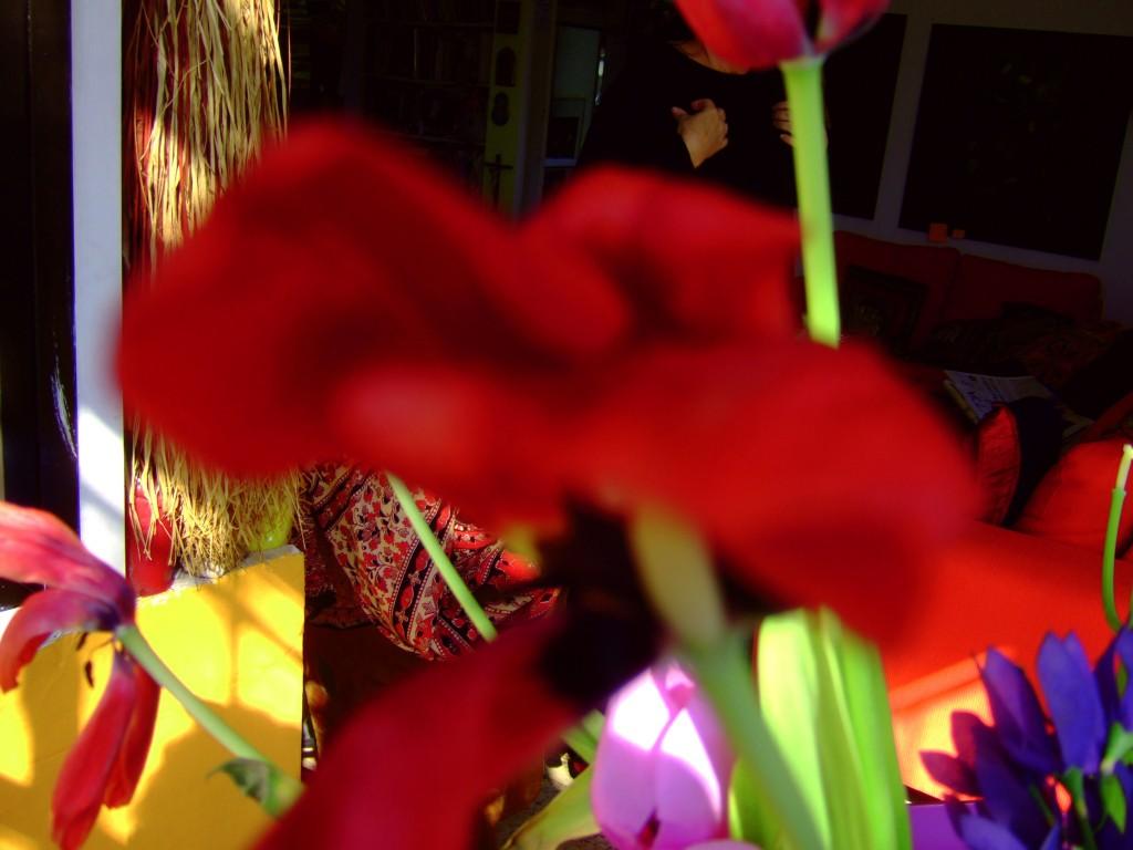 זהבה עם פרח אדום בבית, 2004